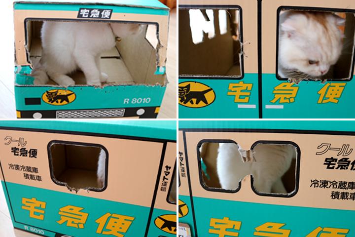 白猫まびこの宅急便リニューアル
