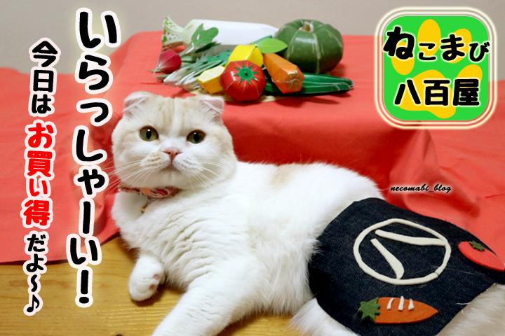 猫の八百屋さん(^^♪