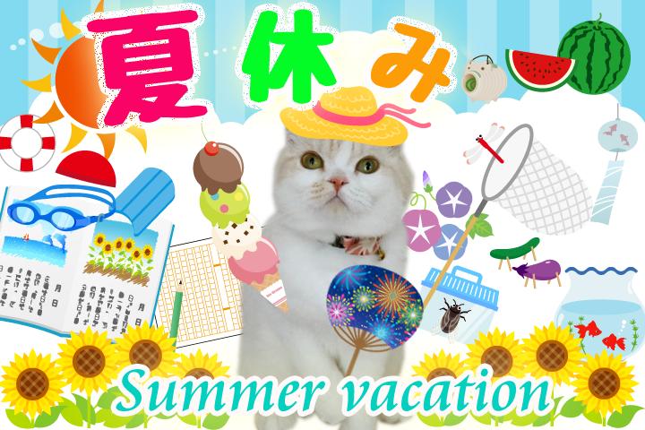 猫にも夏休み?
