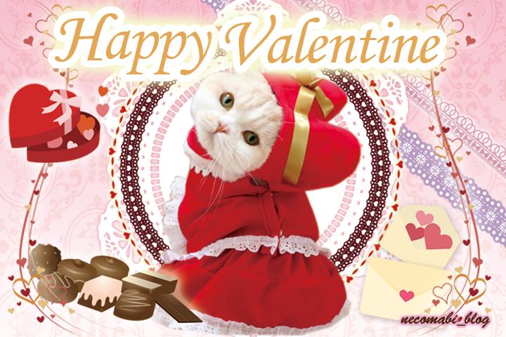 バレンタインは大量のチョコを食す♪
