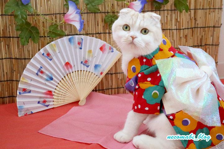 夏の風物詩♪お揃いの手作り浴衣!!