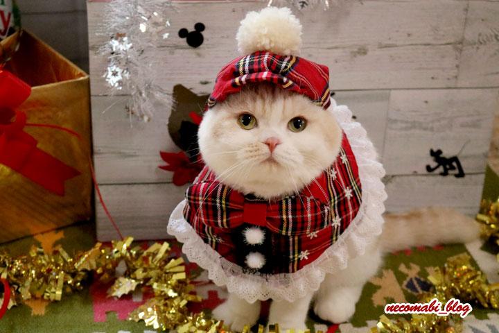 クリスマスイブ!!手作り衣装で撮影会♪