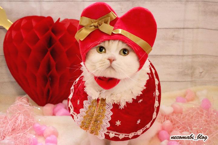 もうすぐバレンタインデー!!手作り衣装で撮影会♪