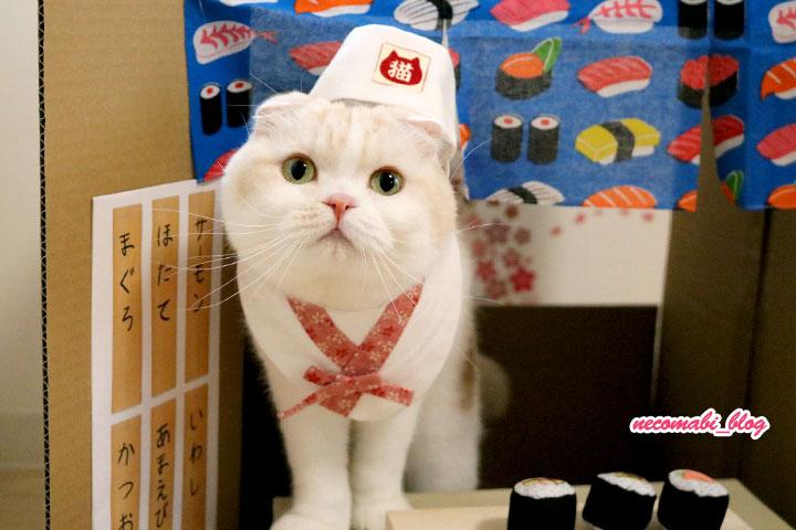 かわいいニャンコのお寿司屋さん♪~まびさん編~