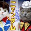 コスプレシリーズ!!~機動戦士ガンダムのアムロ&シャアに大変身♪~