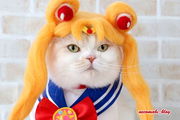 コスプレシリーズ!!~美少女戦士セーラームーンのセーラームーンに大変身♪~