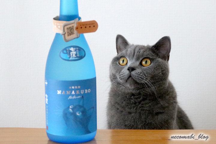 父の日のプレゼント♪~猫デザインのNANAKUBO Blue~