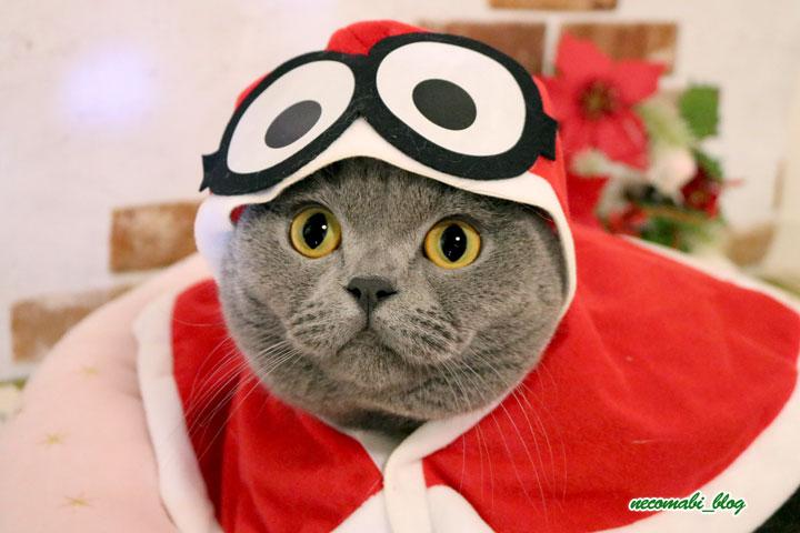 クリスマスプレゼントとサンタミニオンに大変身♪