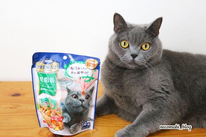 低脂肪♪新しいおやつで猫博士に!?