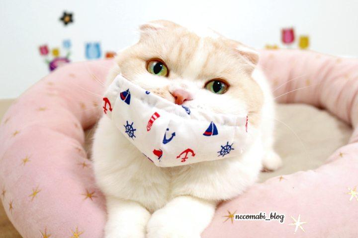 いつでも一緒♪猫村さんふきんで手作り立体マスク!!