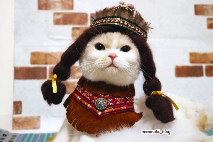 手作り衣装で誇り高きインディアンに大変身♪
