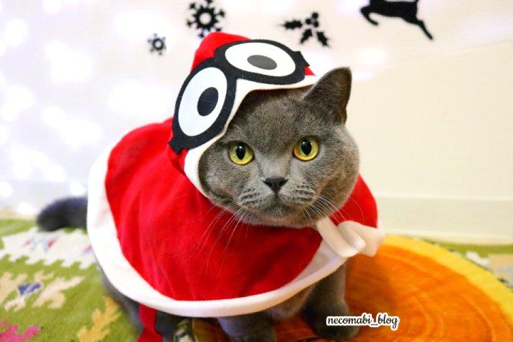 クリスマスミニオン&コロだらけ!!