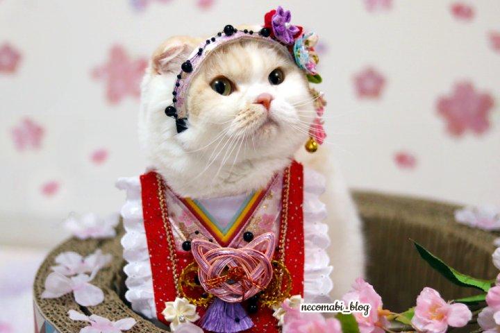 今日は楽しい雛祭り♪~手作り衣装で今年もお雛様とお内裏様に変身!!~